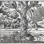 Alciato_1550
