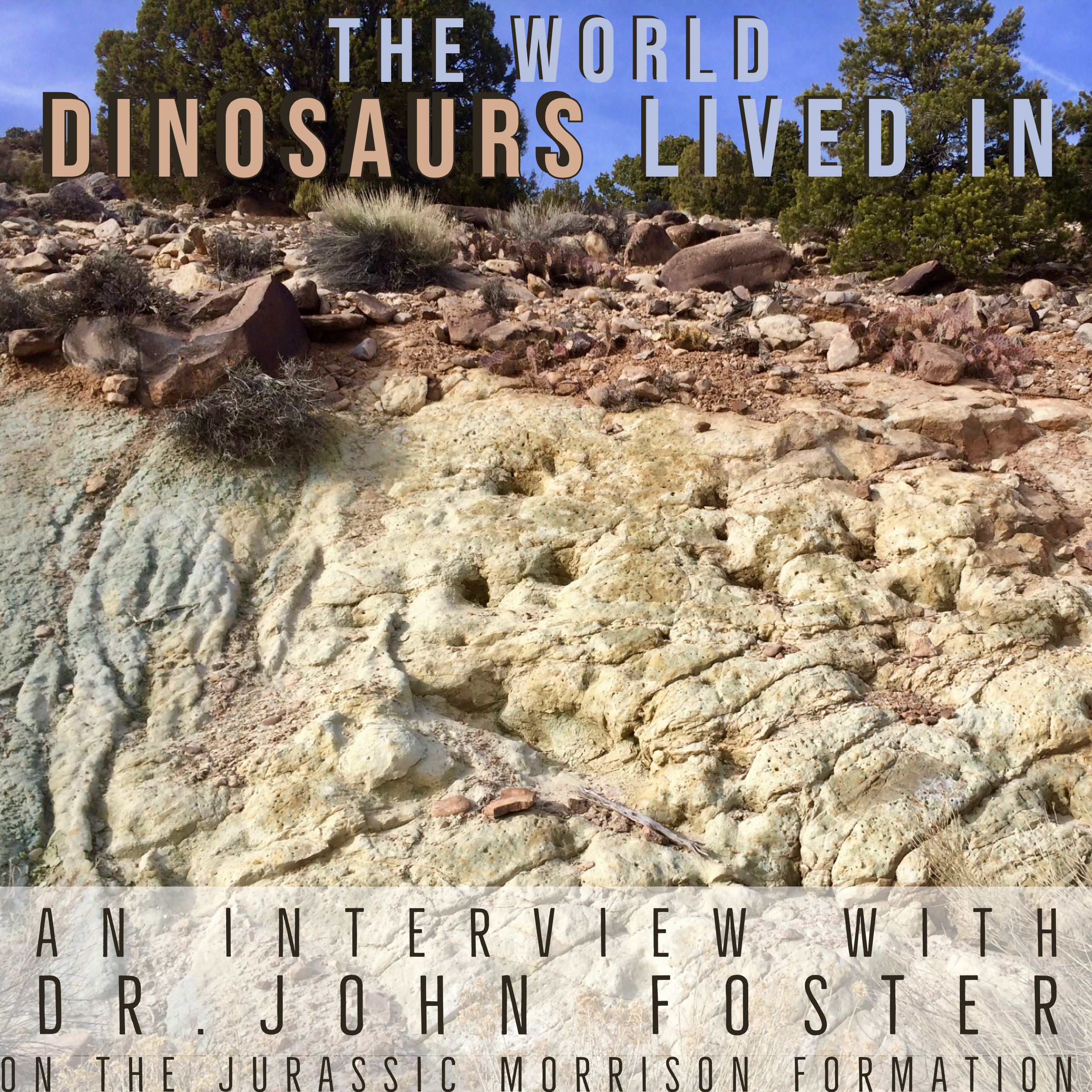 The World Dinosaurs Lived In