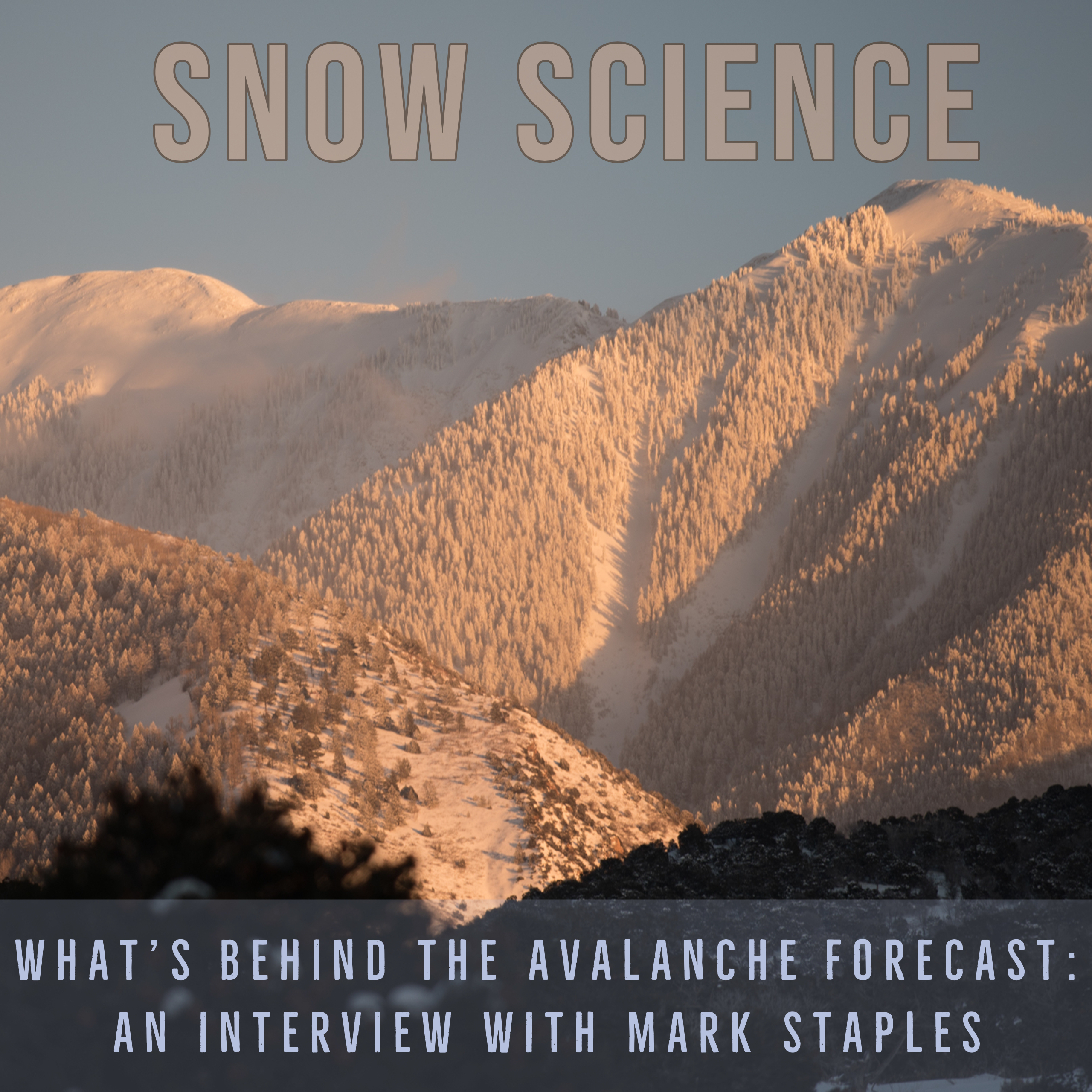 Snow Science and the Avalanche Forecast