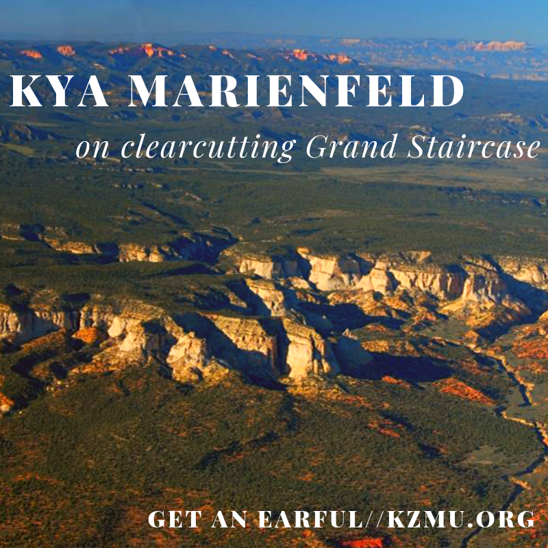 Kya Marienfeld, Clearcutting Grand Staircase on Get An Earful