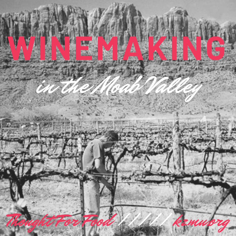 Winemaking in the Moab Valley – on Thought For Food