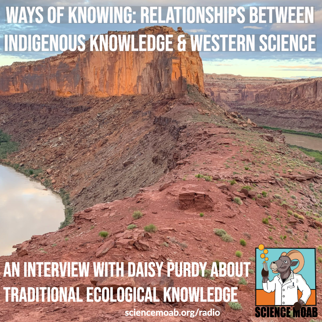 Ways of knowing: relationships between Indigenous knowledge and western science