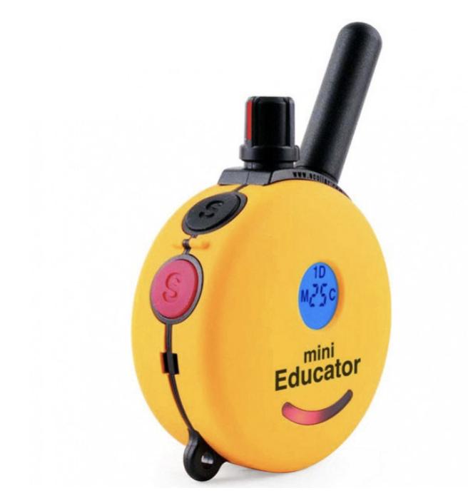 LOST: Yellow remote control for my dog's e-collar