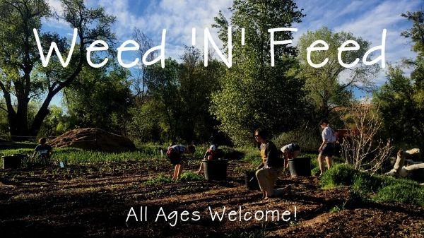 Weed 'N' Feed Biweekly Volunteer Events