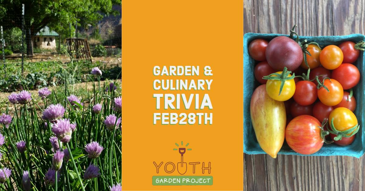 Garden and Culinary Trivia
